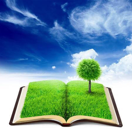 cielos abiertos: libro de la naturaleza con la hierba y el �rbol sobre fondo belleza cielo Foto de archivo