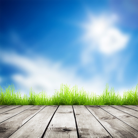 farm background: Fresh spring green grass with blue bokeh and sunlight and wood floor. Natural background