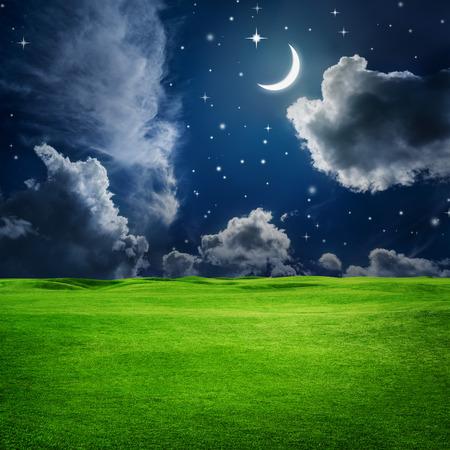 在有月亮和星星的夜空下,绿色的田野。美丽自然背景