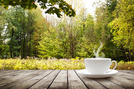 Cup with hot drink on wood table over forest  background