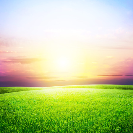 Groen veld en mooie zons ondergang  Stockfoto