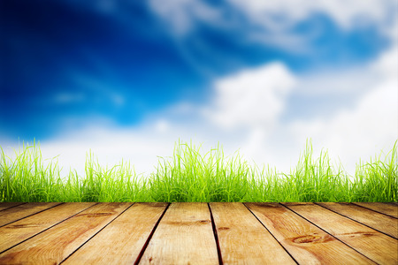 Fresh spring green grass with blue bokeh and sunlight and wood floor. Natural background photo