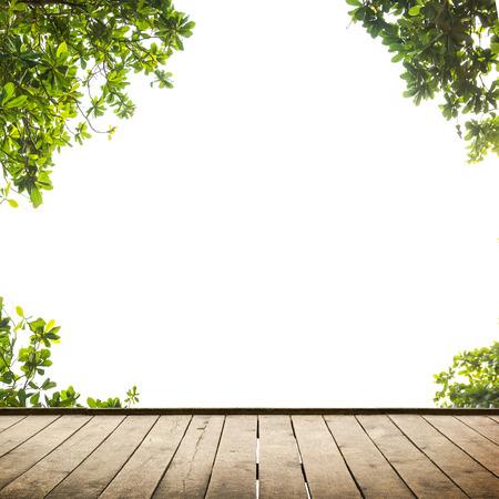 Verse lente groene bladeren met houten vloer over wit. Natuurlijke achtergrond