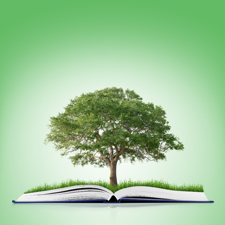 tree of knowledge: book of nature with grass and tree growth on it over white green background