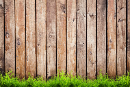 pasture fence: Spring green grass over wood fence background