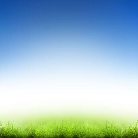 baseball field: Green grass over a blue sky. Beauty natural background Stock Photo