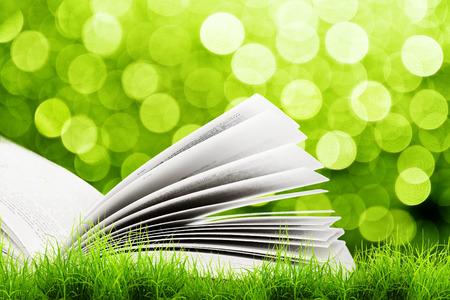 Open book in green grass over yellow bokeh sunlight. Magic book