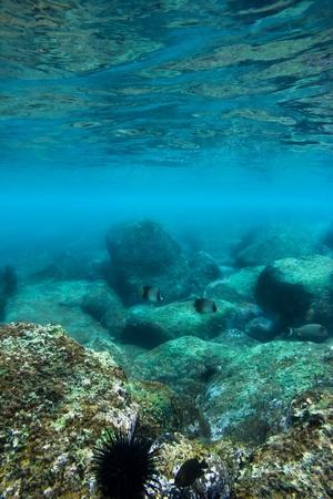 Sea bottom with blue water wave splash background photo