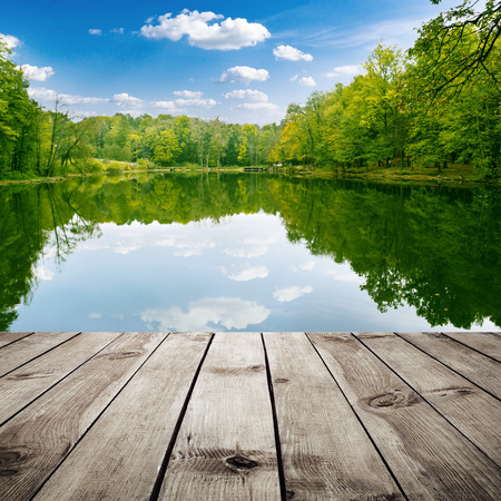 Beautiful forest with reflection in the water and wood planks. Beauty nature photo