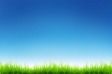 Green grass over a blue sky background photo