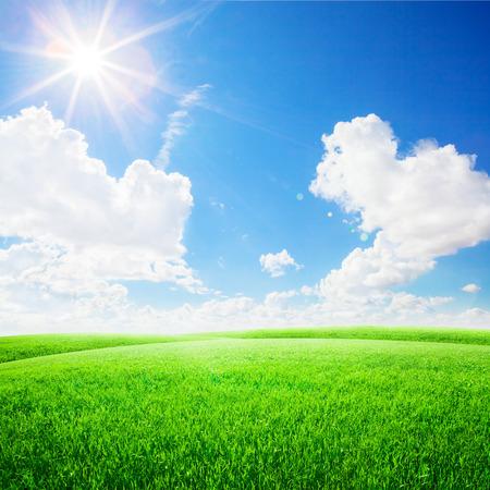 hezk�: Zelená pole pod modrou oblohou. Beauty přírodní pozadí Reklamní fotografie