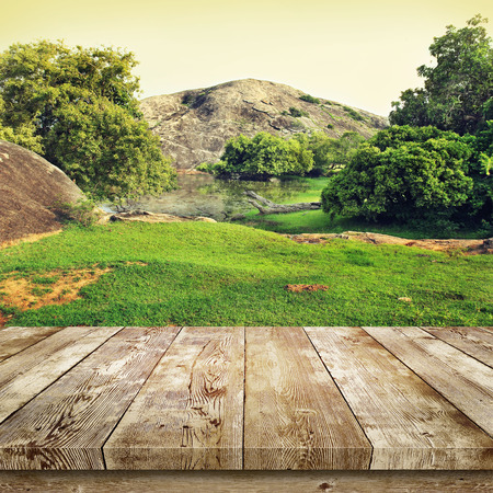 wooden table: Green grass and trees. Beauty nature background.