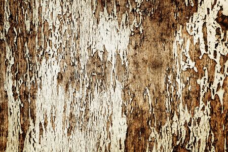 abstrakte muster: Old cracked wood texture with natural patterns background