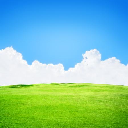 blue green background: Green golf field under blue sky background Stock Photo