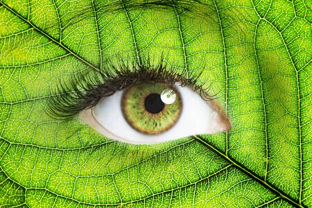 ojo humano: Cerrar una imagen de ojo humano con la hoja verde de fondo doble exposición Foto de archivo