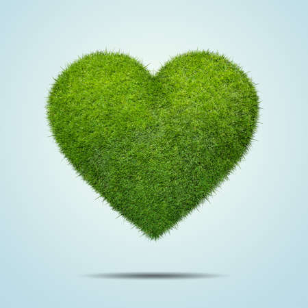 green grass: Heart shape of green grass isolated onwhite background Stock Photo