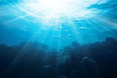 Sea underwater view with sun light. Beauty nature background Stockfoto