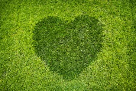 heart background: Heart shape on green grass background