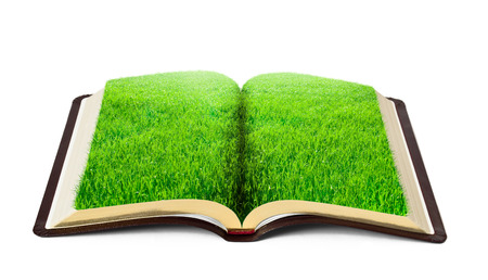 grass land: book of nature with grass isolated on white background