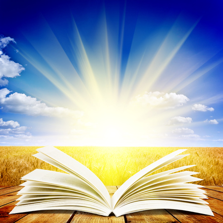 Open book on wooden plank over sunset rays. Education concept background Zdjęcie Seryjne