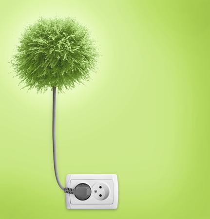 enchufe de luz: Árbol conectado a una toma de luz