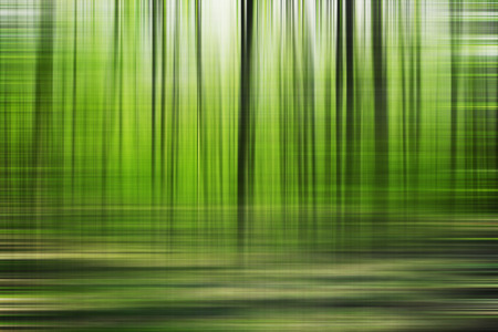 beauty in nature: Beautiful spring blured forest. Abstract nature background Stock Photo