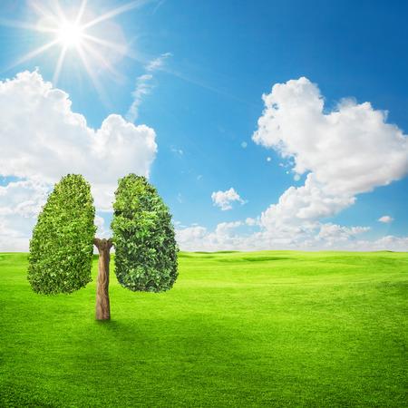 Zielone drzewo w kształcie ludzkich płuc. Obraz koncepcyjny
