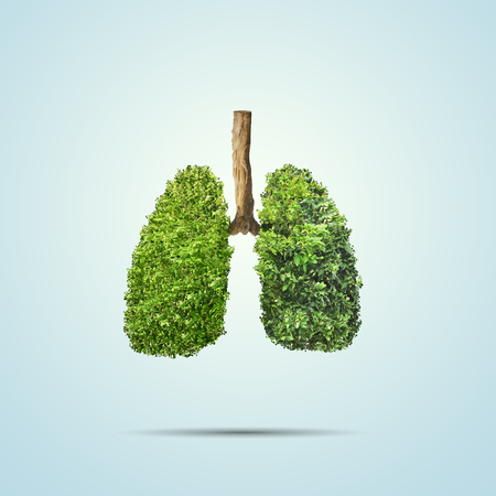 Green leaves shaped in human lungs. Conceptual image