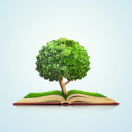 tree of knowledge: Open book with green grass field and tree on it isolated over blue background. Concept image