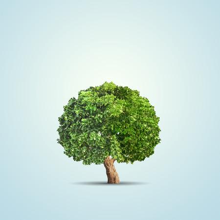 青の背景に分離された緑の木