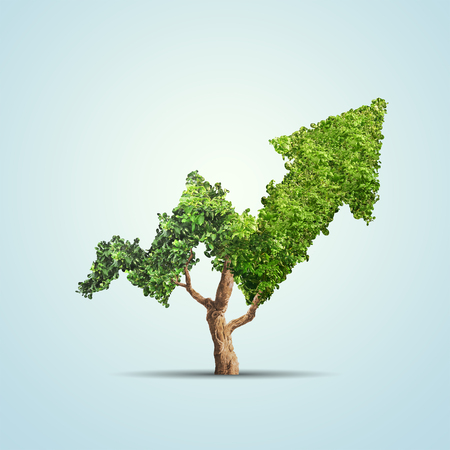 Tree grows up in arrow shape over blue background. Concept business image Archivio Fotografico