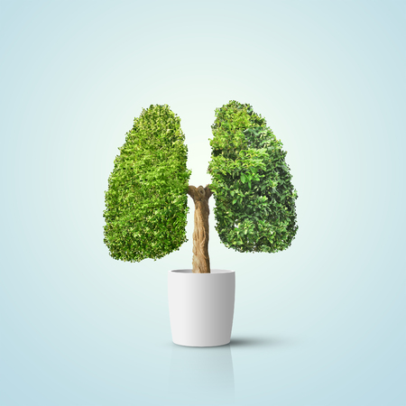 Groene boom gevormd in menselijke longen. Conceptueel beeld Stockfoto