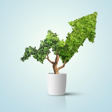 Drzewo rośnie w kształcie strzałki na niebieskim tle. Koncepcja wizerunku firmy