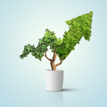 Tree grows up in arrow shape over blue background. Concept business image Imagens
