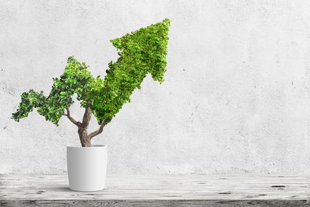 Ingemaakte groene plant groeit in pijlvorm op blauwe achtergrond. Concept bedrijfsimago Stockfoto