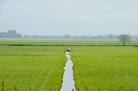 Dutch Farmland Around Weesp Stock Photo