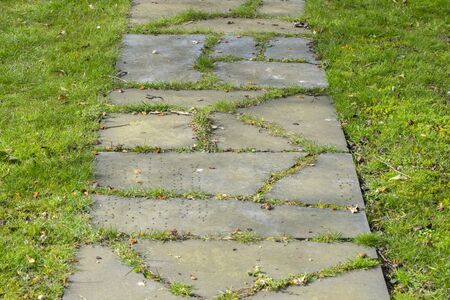 Close Up Walking Stone Path And Grass