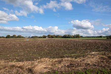 Empty Harvest Farmland At Abcoude The Netherlands Фото со стока