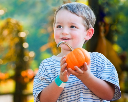 pick: Happy young boy picking a pumpkin for Halloween  Stock Photo