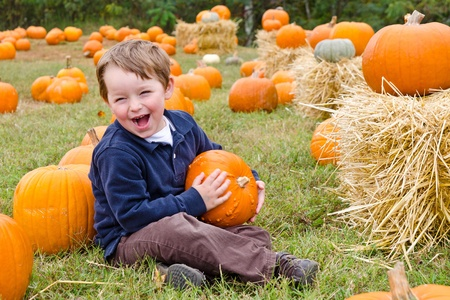 pumpkin patch: Happy young boy picking a pumpkin for Halloween  Stock Photo