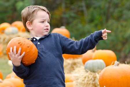 Happy young boy picking a pumpkin for Halloween  photo