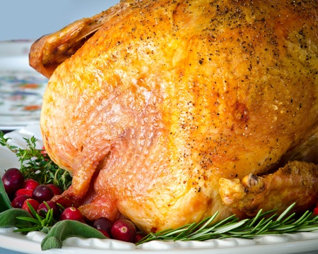 christmas turkey: Roasted turkey stuffed with cranberries and herbs for Thanksgiving or Christmas dinner