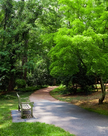 verdant: Park bench along trail during spring