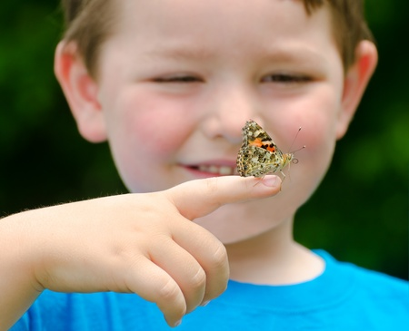 Spring concept with close up of a painted lady butterfly, Vanessa cardui, being held by child playing outdoors in nature photo