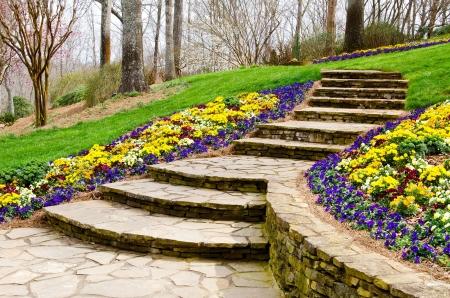 As etapas que conduzem ao jardim