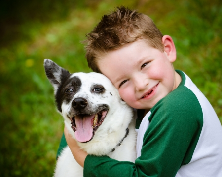 Child lovingly embraces his pet dog, a blue heeler Stockfoto
