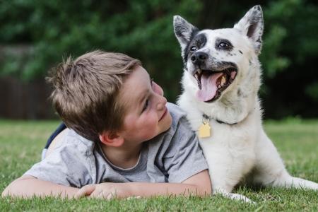 Kind speelt met zijn hond, een blauwe heeler