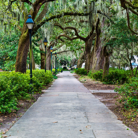 savanna: Forsyth Park in Savannah, GA Stock Photo