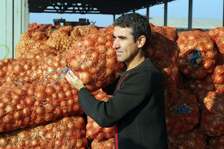 Young farmer carrying a sack of onions in the warehouse.