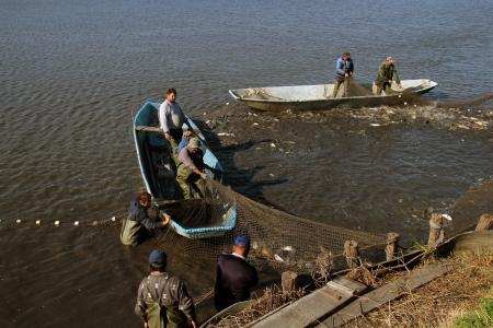 trawl:  Fishermen Pulling Fishing Net